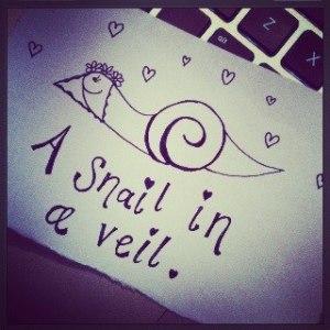 snail in a veil